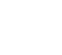 The-Weston-System-LOGO-WHITE